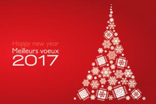 image-voeux-2017